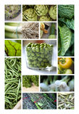 Green vegetable and herbs Royalty Free Stock Photography