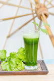 Green vegetable juice with fresh celery Royalty Free Stock Photos