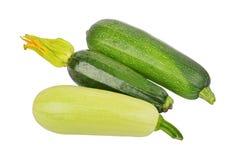 Green vegetable marrow (zucchini) Stock Photos