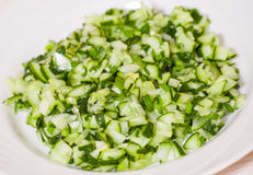 Green vegetable salad of cucumbers, spring onion Royalty Free Stock Image