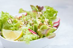 Green vegetable salad with sprouts. Beetroot and hummus. Healthy detox vegan food concept Stock Photography