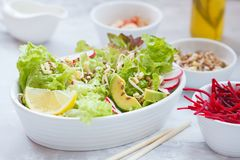 Green vegetable salad with sprouts. Beetroot and hummus. Healthy detox vegan food concept Royalty Free Stock Image