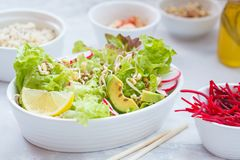 Green vegetable salad with sprouts. Beetroot and hummus. Healthy detox vegan food concept Stock Image
