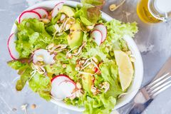Green vegetable salad with sprouts. Gray background, top view. Healthy detox vegan food concept Stock Photo