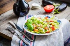 Green vegetable salad with tomato, eggplant, sesame seeds and ba Royalty Free Stock Photo