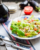 Green vegetable salad with tomato, eggplant, sesame seeds and ba Royalty Free Stock Photography