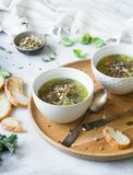 Green vegetable vegan soup from keil, brussels sprouts, zucchini, leek with various germinated seeds and sprouts with croutons on. Wood tray on light background stock photos