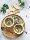 Green vegetable vegan soup from keil, brussels sprouts, zucchini, leek with various germinated seeds and sprouts with croutons on. Wood tray on light background stock images