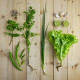 Green Vegetable stock image