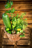 Green vegetables in basket on garden table Royalty Free Stock Image
