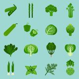 Green vegetables collection, info graphic food, vector illustration royalty free stock photos