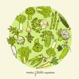 Green vegetables collection. Round design template Stock Images
