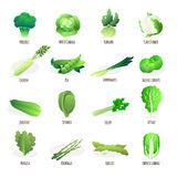 Green vegetables flat icons collection Stock Images
