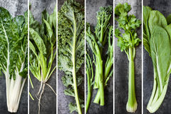 Green Vegetables Food Collage. Silver beet, spinach, kale, broccolini, celery and chard, over dark slate Stock Photos