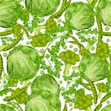 Green vegetables seamless pattern Royalty Free Stock Images