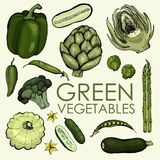 Collection of green vegetables for independent or joint use. stock illustration
