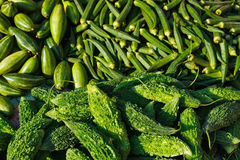 Green vegetables in variety. Many green vegetables ladyfingers and karela in Indian market Royalty Free Stock Images