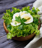 Green vegetarian salad with egg Stock Photography