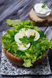 Green vegetarian salad with egg Royalty Free Stock Images