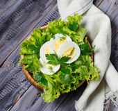 Green vegetarian salad with egg Stock Images