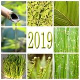 2019 green vegetation collage. 2019, green vegetation collage greeting card royalty free stock photo