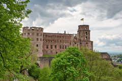 Green vegetation in front of Heidelberg Castle Royalty Free Stock Photos
