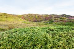 Green vegetation near volocanic crater in Iceland. Travel to Iceland - green vegetation near volocanic crater with Kerid lake in september stock photo