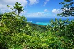 Green vegetation ocean view French Polynesia Stock Photos