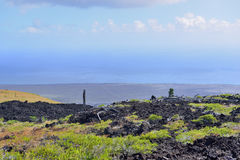 Green vegetation on an old lava flow field by the ocean in Volcanoes National Park, Big Island of Hawaii Royalty Free Stock Images
