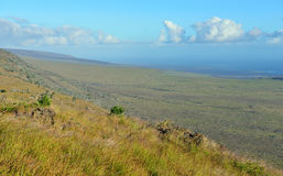 Green vegetation on an old lava flow field by the ocean in Volcanoes National Park, Big Island of Hawaii Stock Photos