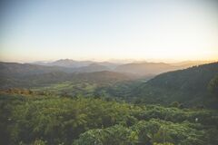 Green Vegetation in Scenic Valley Royalty Free Stock Photo