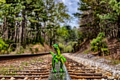 Green Velociraptor dinosaur walking on rail railroad tracks Royalty Free Stock Images
