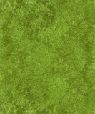 Green velvet background. Green velvet on textured background royalty free stock image