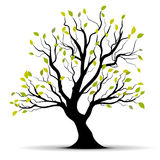 green över treevektorwhite Arkivfoto