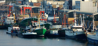 Green vessels. Among blue vessels at Ijmuiden harbor nearby Amsterdam Netherlands Royalty Free Stock Images