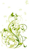 Green vine royalty free stock images