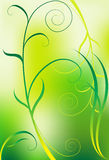 Green Vine Background Royalty Free Stock Images
