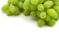 Green vine grapes. Isolated on the white background royalty free stock photo