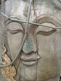 Green vine on stone carving Buddha face Royalty Free Stock Photos