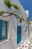 Green vine on Typical white house in town of Naoussa, Paros island, Greece Royalty Free Stock Photography
