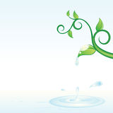 Green vine and water Stock Photography