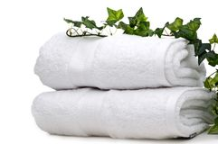 Green vine on white towels Royalty Free Stock Photography