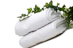 Green vine on white towels Royalty Free Stock Image