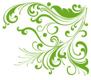 Green vines pattern. Drawing of vines pattern in a white background Stock Photography