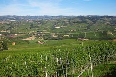 Green vineyards and Langhe hills landscape view in a sunny day in Italy. Green vineyards and Langhe hills landscape view in a sunny day in Piedmont, Italy Stock Photos