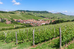 Green vineyards and small town in Italy. Stock Photos