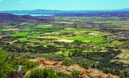 Green vineyards of Tuscany Stock Photos