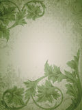 Green vintage background Royalty Free Stock Photo