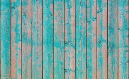 Green vintage wooden boards as background Stock Photos