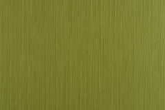 Green vinyl texture Royalty Free Stock Photos